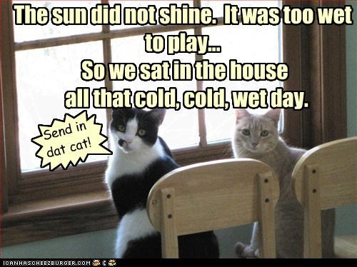 The sun did not shine. It was too wet to play... So we sat in the house all that cold, cold, wet day. { Send in dat cat!