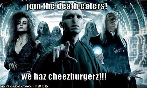 Cheezburger Image 3035110656