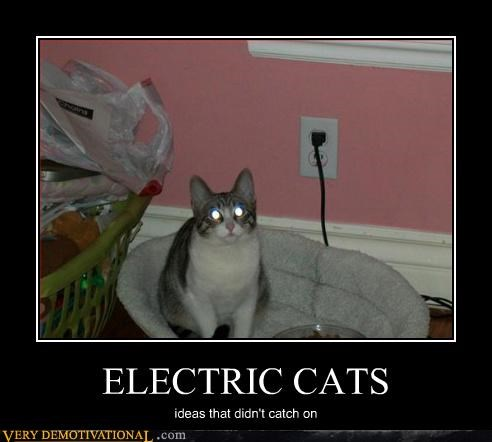 cat wtf electric