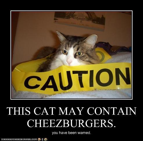 Cheezburger Image 3037656320