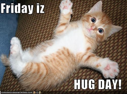 Friday Iz Hug Day Cheezburger Funny Memes Funny Pictures