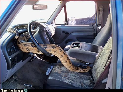 alarm,car,Mission Improbable,safety,snake
