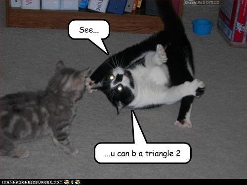 Cheezburger Image 3039959040