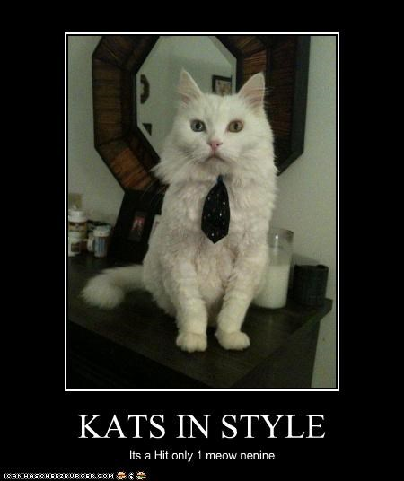 KATS IN STYLE Its a Hit only 1 meow nenine