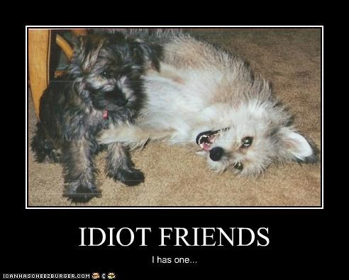 IDIOT FRIENDS I has one...