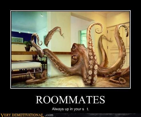 ROOMMATES Always up in your shit.