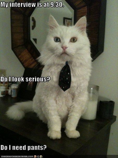 costume interview pants tie work - 3045394688