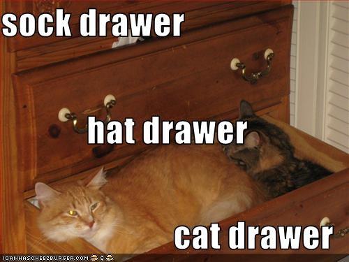 drawer nap - 3045670912