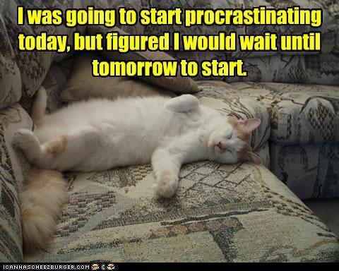 couch lazy nap procrastination - 3047996160