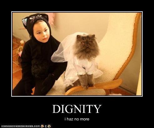 DIGNITY i haz no more
