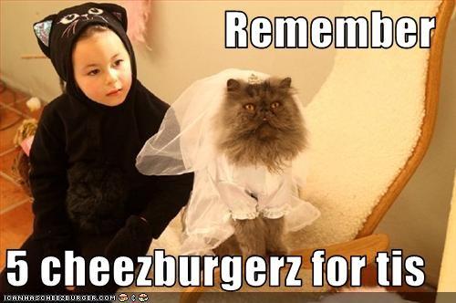 Cheezburger Image 3050078208