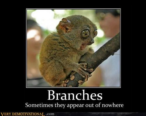 branches hilarious monkey surprise wtf - 3050422272