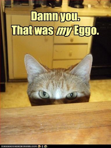 Damn you. That was Eggo. my