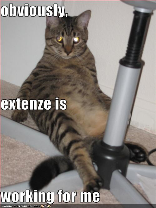 Obviously Extenze Is Working For Me Cheezburger Funny Memes