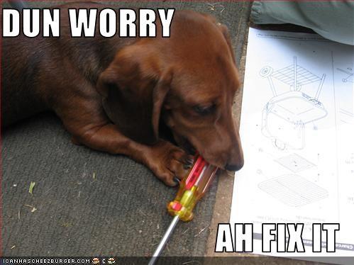 dachshund,fix,tools
