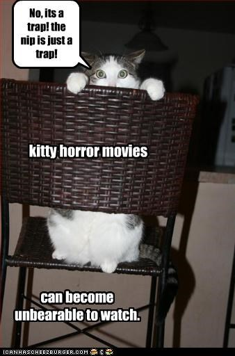 No, its a trap! the nip is just a trap! kitty horror movies can become unbearable to watch.