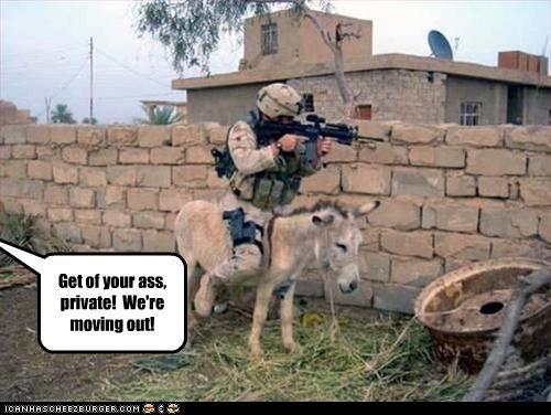 donkey guns soldier - 3058545920