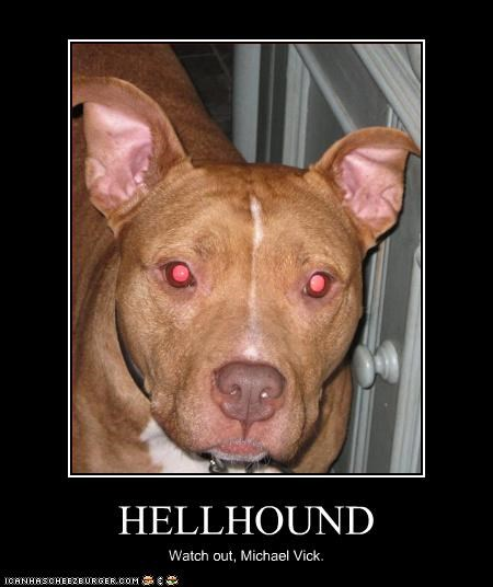 HELLHOUND Watch out, Michael Vick.
