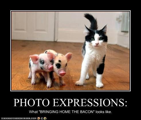"PHOTO EXPRESSIONS: What ""BRINGING HOME THE BACON"" looks like."