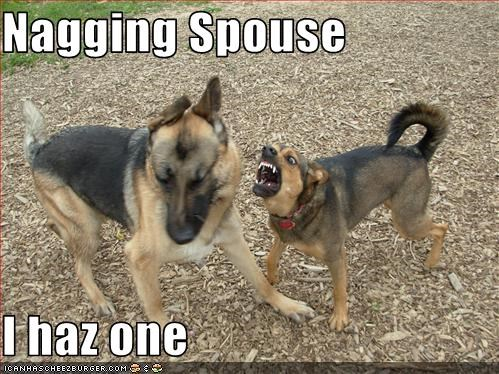 bark,german shepherd,husband,marriage,nagging,shouting,spouse,whatbreed,wife