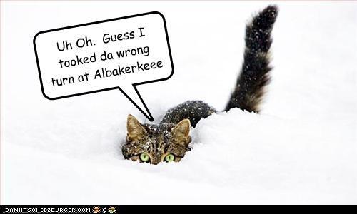 Uh Oh. Guess I tooked da wrong turn at Albakerkeee