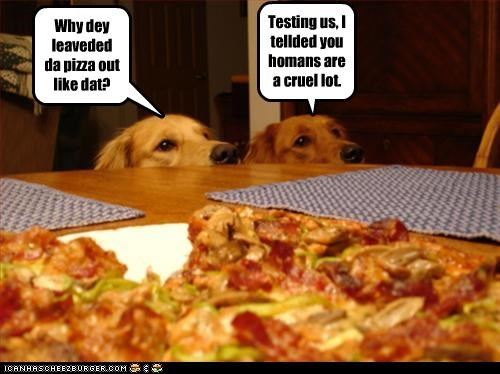 Why dey leaveded da pizza out like dat? Testing us, I tellded you homans are a cruel lot.