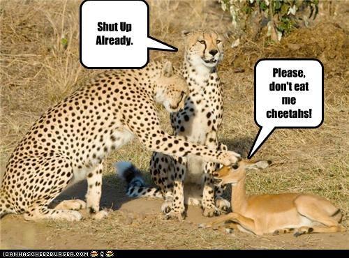 Please, don't eat me cheetahs! Shut Up Already.