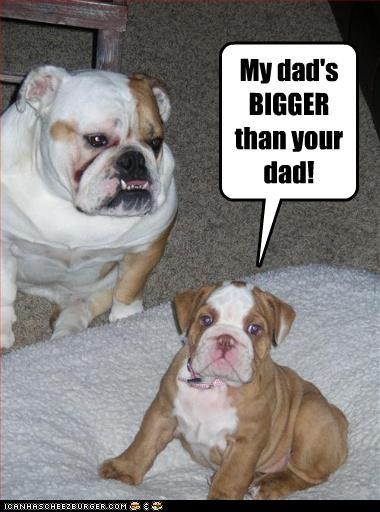 big bulldog daddy puppy tough - 3067168768
