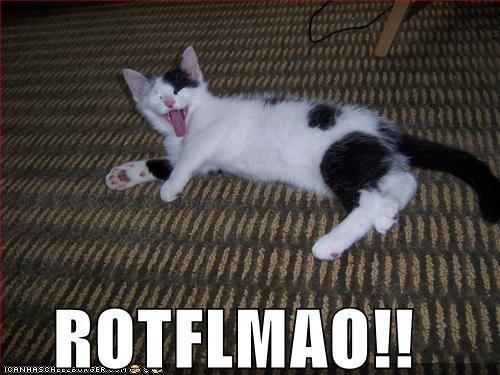 ROTFLMAO!! - Cheezburger - Funny Memes | Funny Pictures