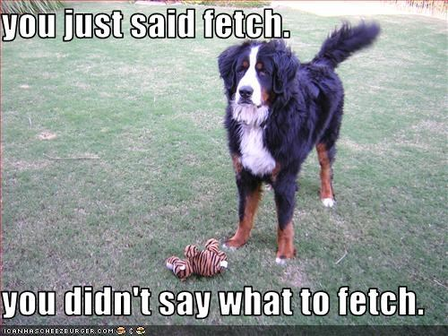 bernese mountain dog fetch stuffed animal - 3071323904
