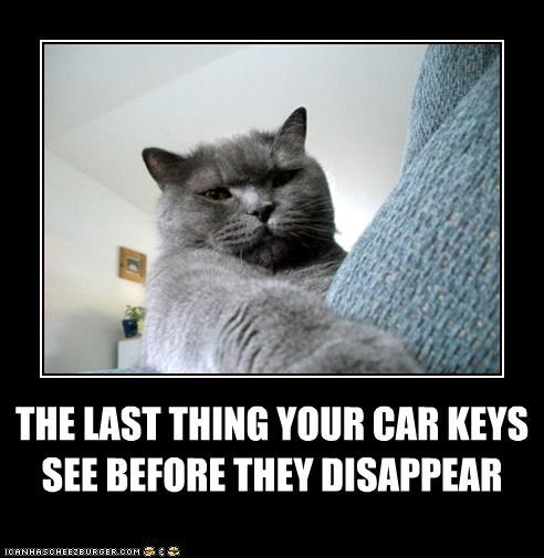 keys sneaky stealing thief - 3072282624