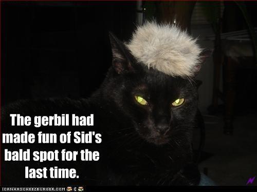 costume gerbil murder toupee - 3072290048