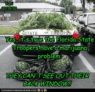 Yes, it's true the Florida State Troopers have a marijuana problem: THEY CAN'T SEE OUT THEIR BACK WINDOW!! Yurii 01/15/10