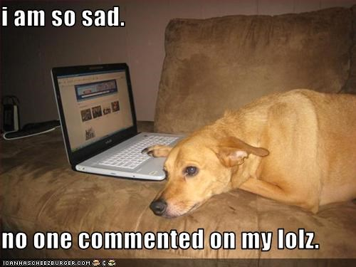 comments computer internet labrador Sad