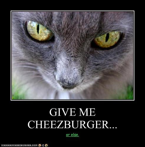 Cheezburger Image 3073897216
