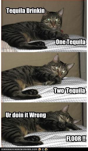 One Tequila Two Tequila FLOOR !! Tequila Drinkin Ur doin it Wrong