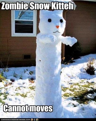 Zombie Snow Kitteh Cannot moves