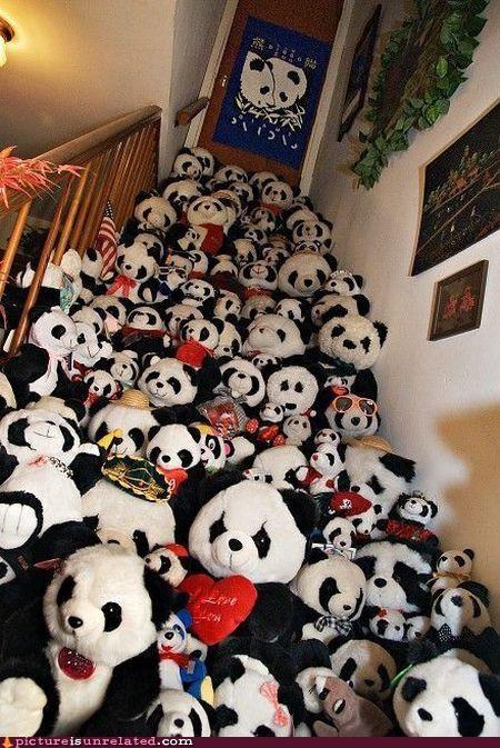 horde image panda wtf wwf - 3083387136