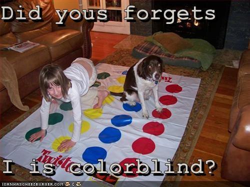 colorblind games springer spaniel - 3083536128