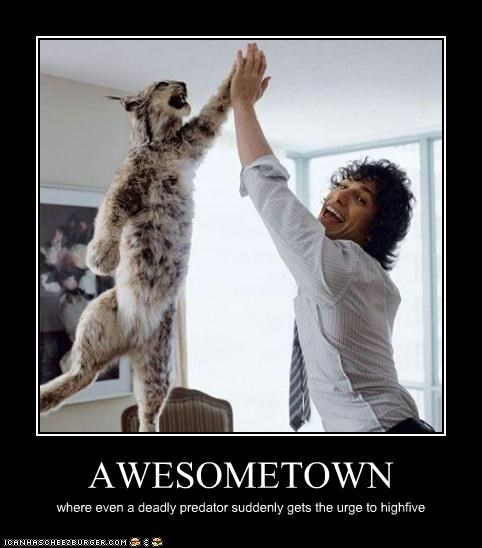 andy samberg awesome comedian high five lolcats - 3084177408