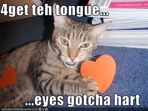 Cheezburger Image 3085711872
