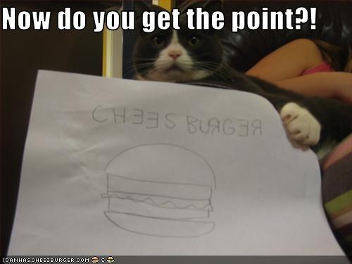 Cheezburger Image 3087760640