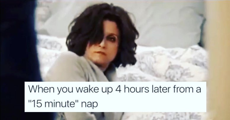 Collection of funny memes about hump day, food, sex, dating, tinder, online dating, relationships, animals, cats, dogs, raccoons, mountain dew, school, tests, exams, wedding, marriage.