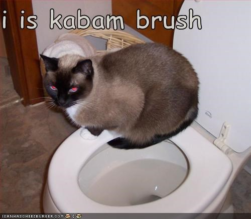 I Is Kabam Brush Cheezburger Funny Memes Funny Pictures