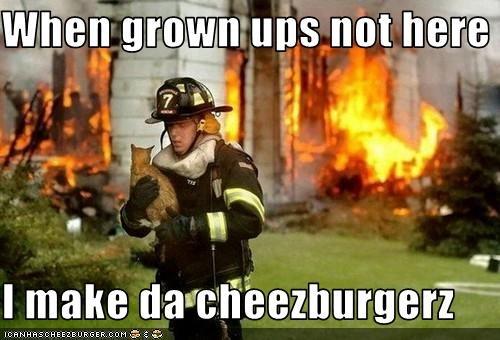 Cheezburger Image 3090959616
