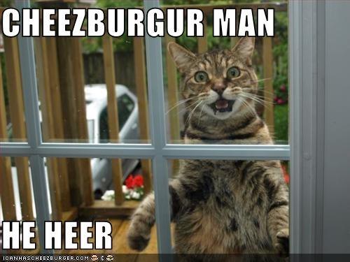 Cheezburger Image 3092626432