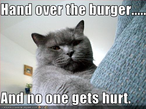 Cheezburger Image 3093134592