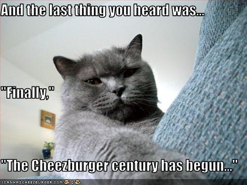Cheezburger Image 3093550592