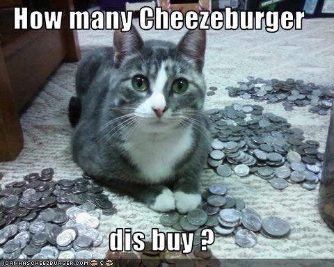 Cheezburger Image 3093907200