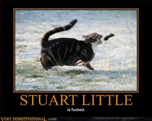 cat nature Pure Awesome pwnage stuart little Terrifying - 3093924864
